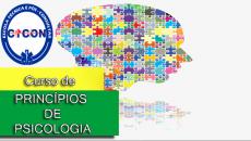 Princípios de Psicologia