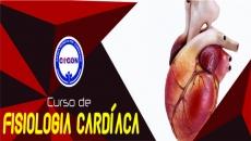 Noções de Fisiologia Cardiovascular