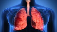 Noções de Fisiologia do Sistema Respiratório